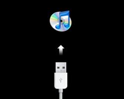 Hvorfor kan jeg ikke se min iPhone i iTunes?